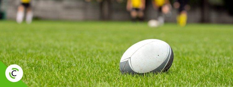 Campi da rugby
